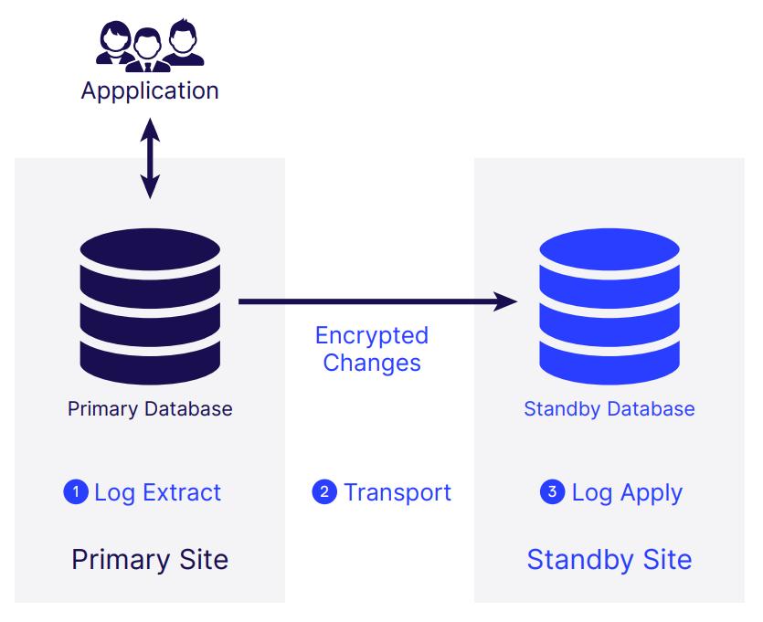 Image - Architecture - Standby - Basic - Minimal Border V2
